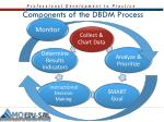 components of the dbdm process
