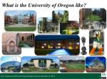 what is the university of oregon like