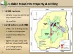 golden meadows property drilling