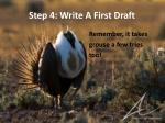 step 4 write a first draft