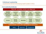 individual leadership sustained commitment to developing health leaders in africa2