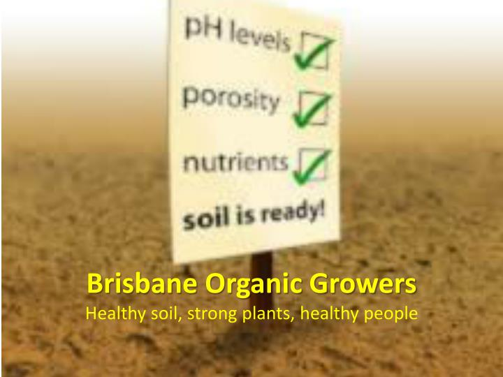 brisbane organic growers healthy soil strong plants healthy people n.