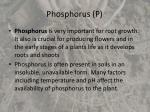 phosphorus p