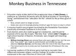 monkey business in tennessee