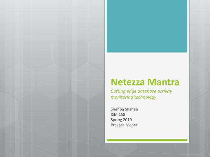 netezza mantra c utting edge database activity monitoring technology n.