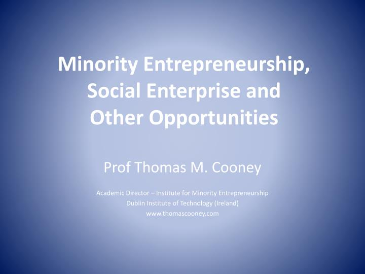 minority entrepreneurship social enterprise and other opportunities n.