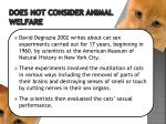 does not consider animal welfare