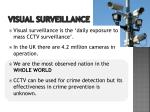 visual surveillance