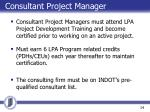 consultant project manager