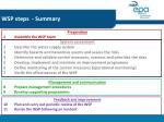 wsp steps summary
