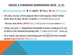 hedge a forward borrowing rate 1 2