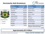 municipality debt breakdown