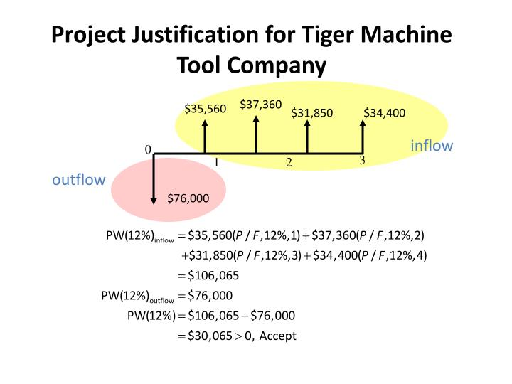 Project Justification for Tiger