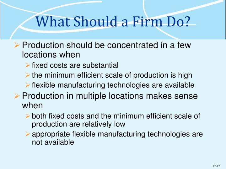What Should a Firm Do?