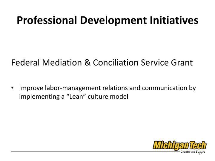 Professional Development Initiatives