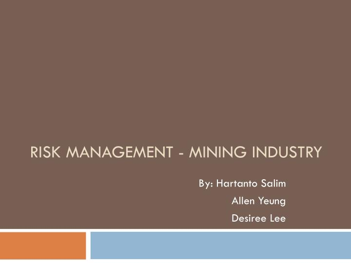 risk management mining industry n.