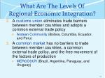 what are the levels of regional economic integration1