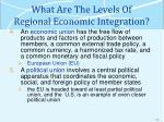 what are the levels of regional economic integration2