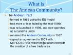 what is the andean community