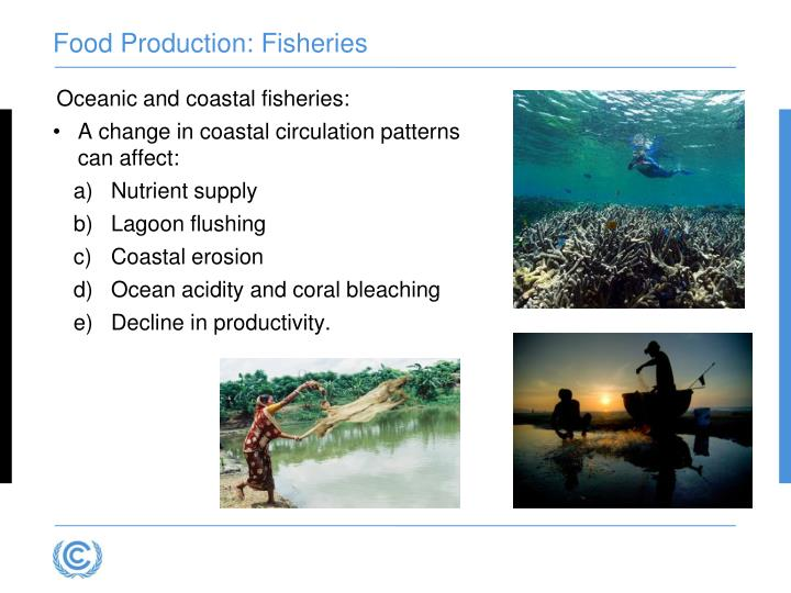Food Production: