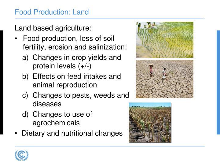 Food Production: Land