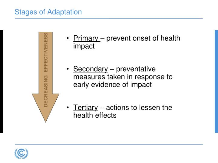 Stages of Adaptation