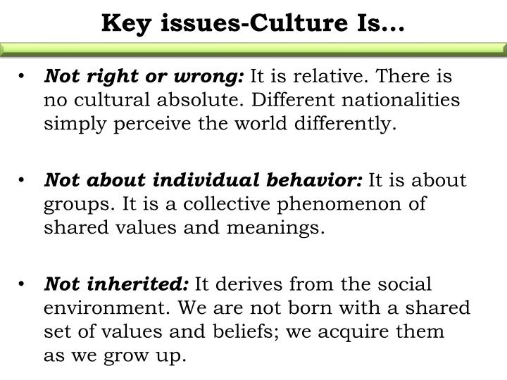 Key issues-Culture Is…