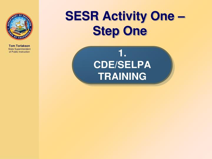 SESR Activity One – Step One