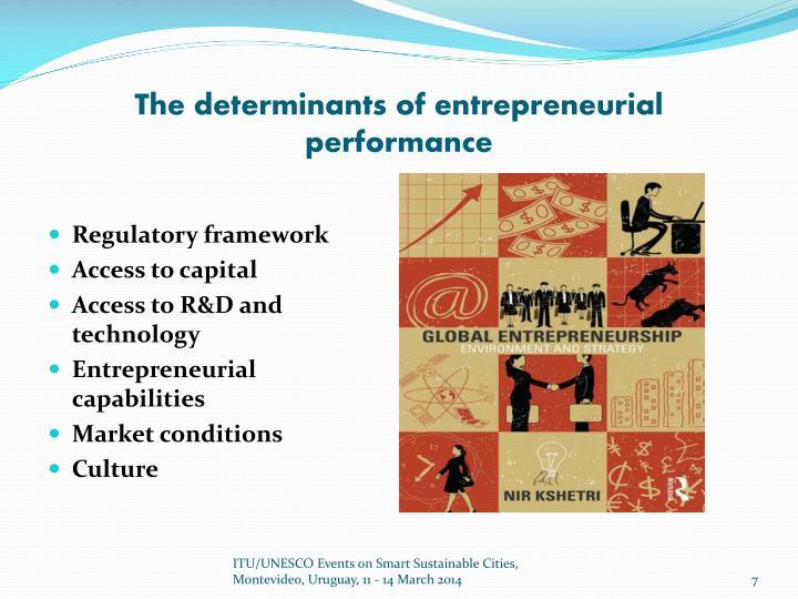 The determinants of entrepreneurial performance