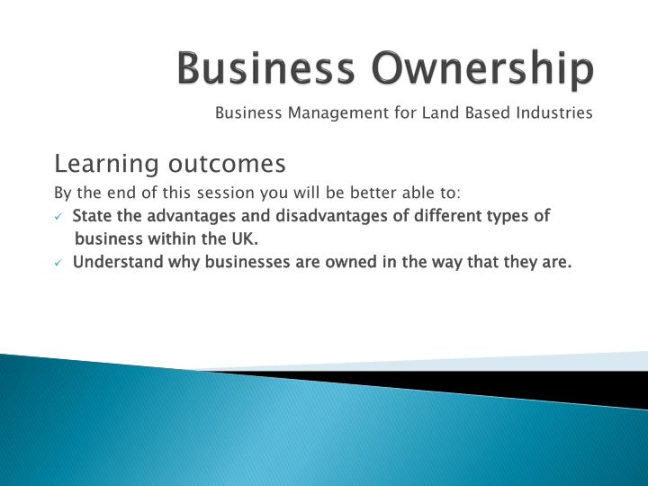 business ownership n.