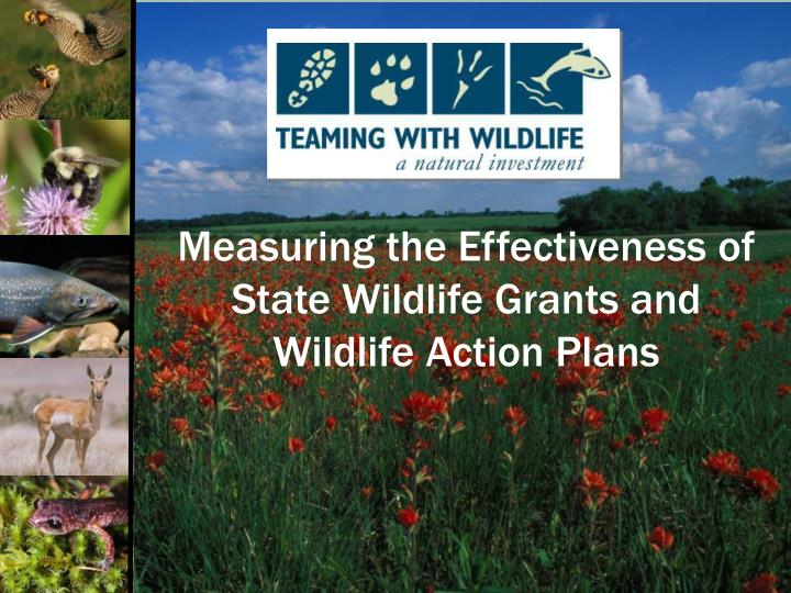 Measuring the Effectiveness of State Wildlife Grants and