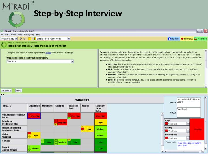 Step-by-Step Interview