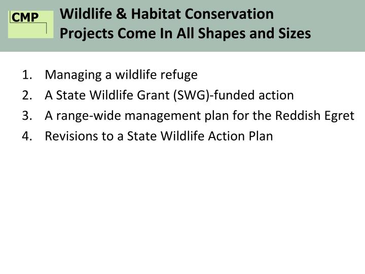 Wildlife & Habitat Conservation