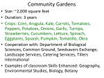 community gardens2