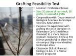 grafting feasibility test1