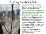 grafting feasibility test2