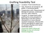 grafting feasibility test4