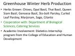 greenhouse winter herb production1