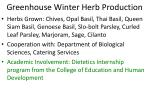 greenhouse winter herb production2