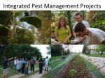 integrated pest management projects4