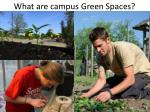 what are campus green spaces