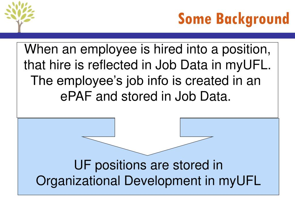 PPT - PRO319 Guide to Faculty Appointments, Recruitment, and