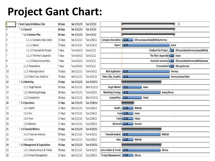 Project Gant Chart: