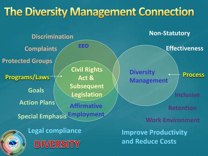 The Diversity Management Connection