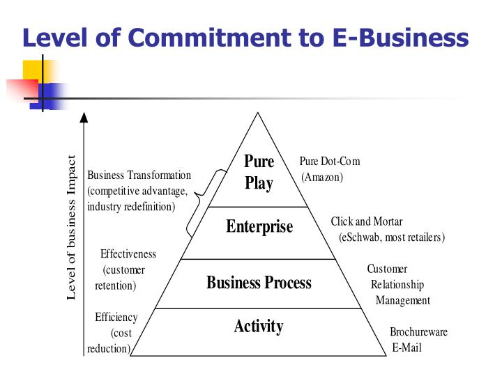 Level of Commitment to E-Business