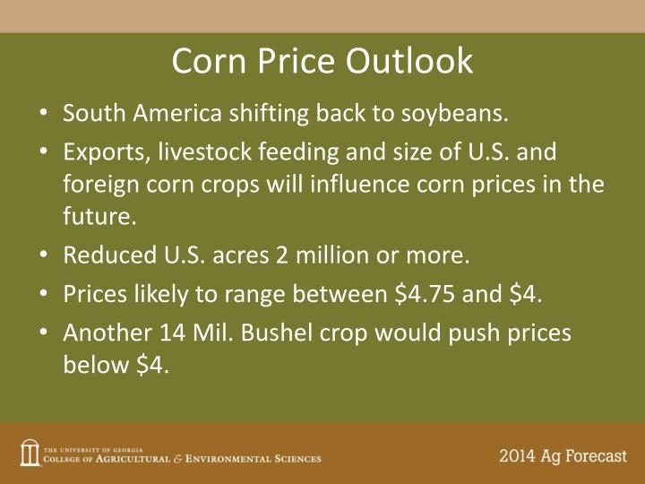 Corn Price Outlook