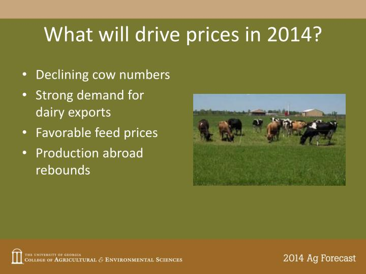 What will drive prices in 2014?