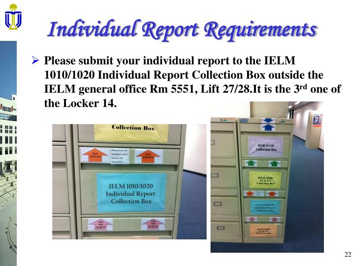 Individual Report Requirements