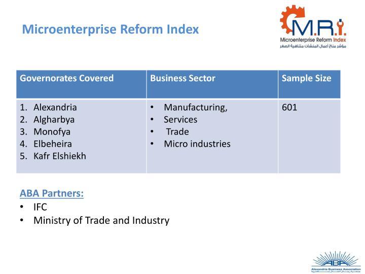 Microenterprise Reform