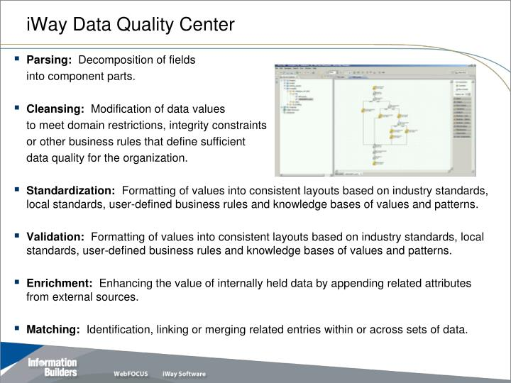 iWay Data Quality Center